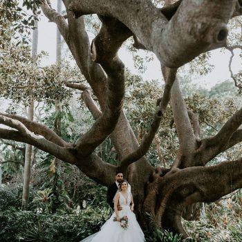 Roma Street Parkland wedding photographer