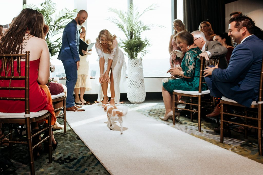 dog friendly wedding venue Brisbane